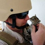 cats_in_army-2_min